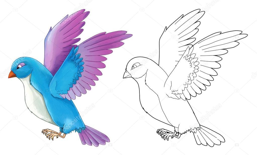 Dibujos animados de aves exóticas de colores - volar — Fotos de ...