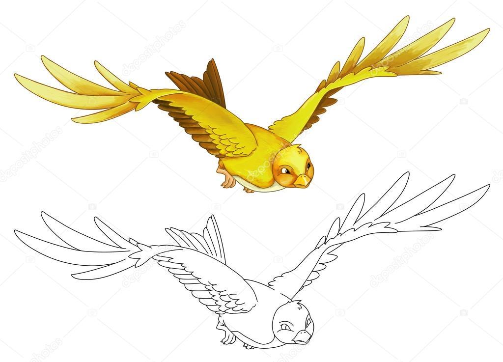 Dibujos: pájaros en color volando | Dibujos animados de aves ...