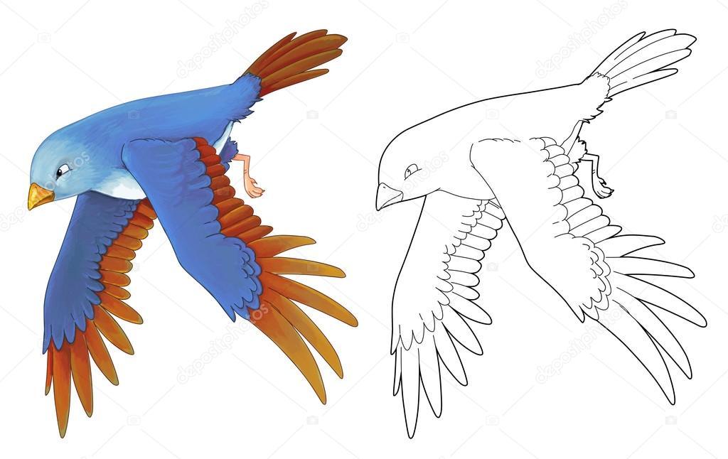Dibujos: aves a color volando | Dibujos animados de aves exóticas de ...