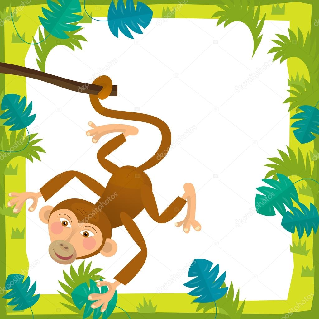 cartoon frame scene monkey illustration for the children photo by illustrator_hft - Monkey Picture Frame