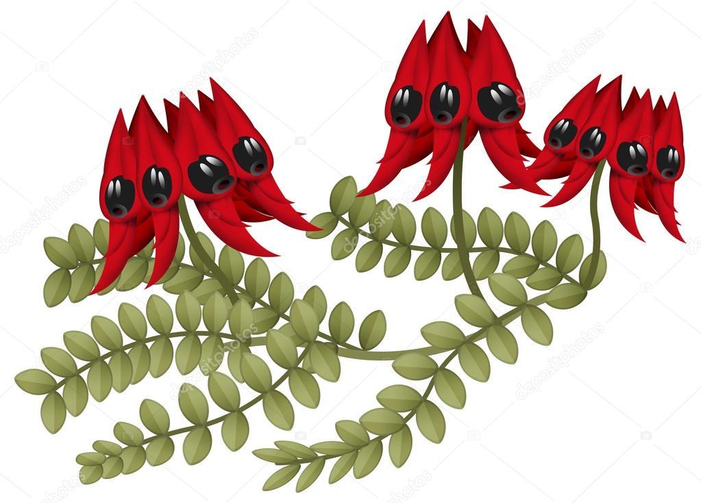 Cartoon australische Pflanze — Stockfoto © illustrator_hft #91254856