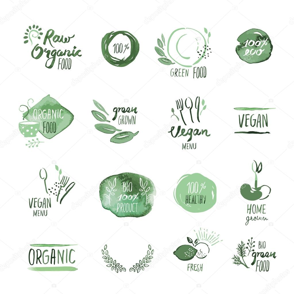 Set of organic food hand drawn watercolor stickers and elements
