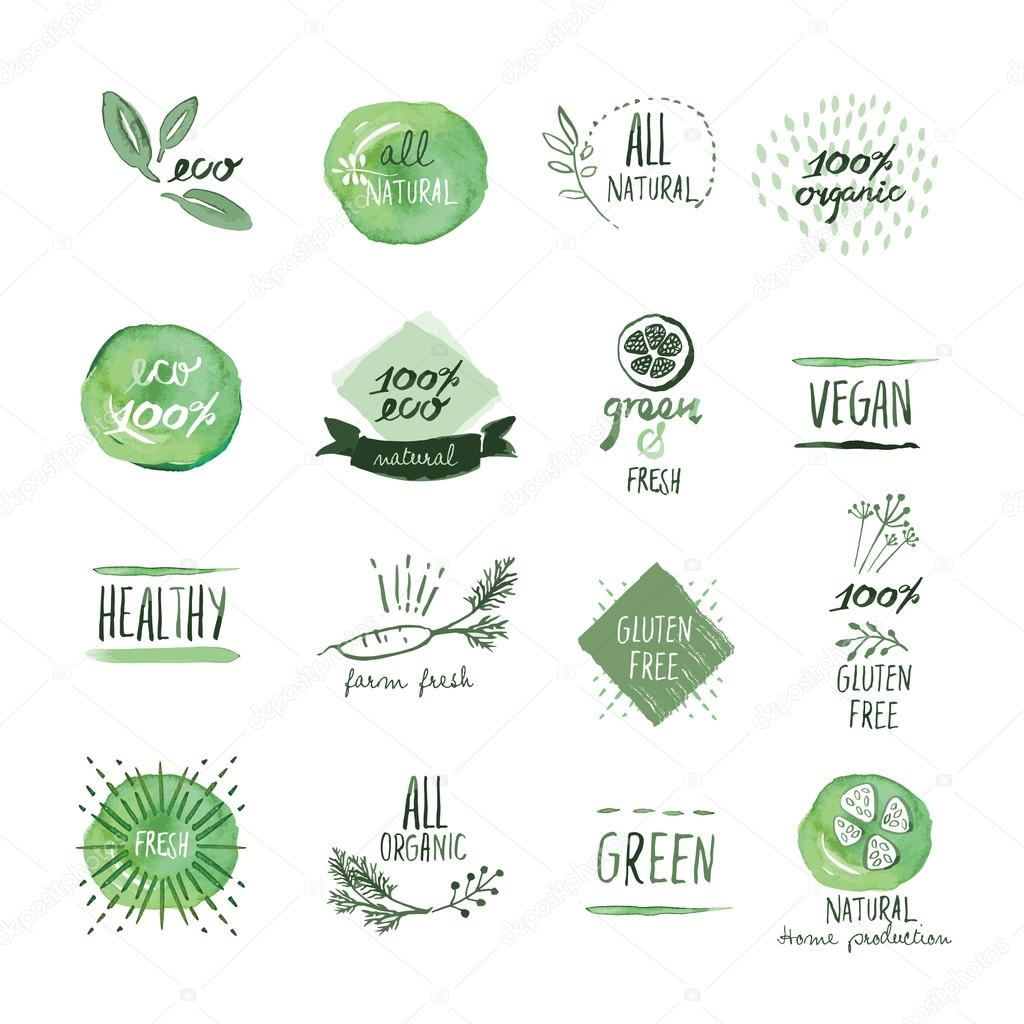 Set of organic food hand drawn watercolor labels and elements