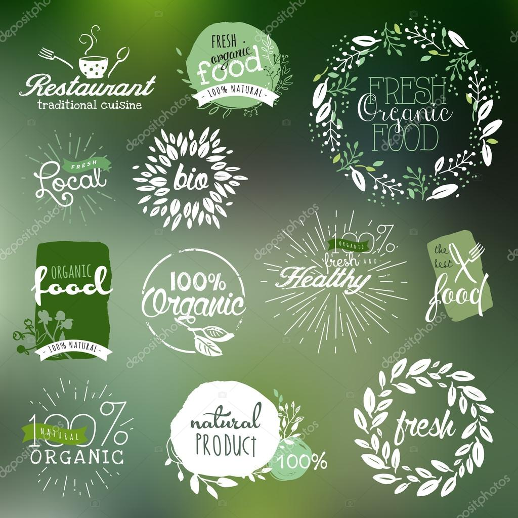 Hand drawn labels and elements collection for organic food and drink
