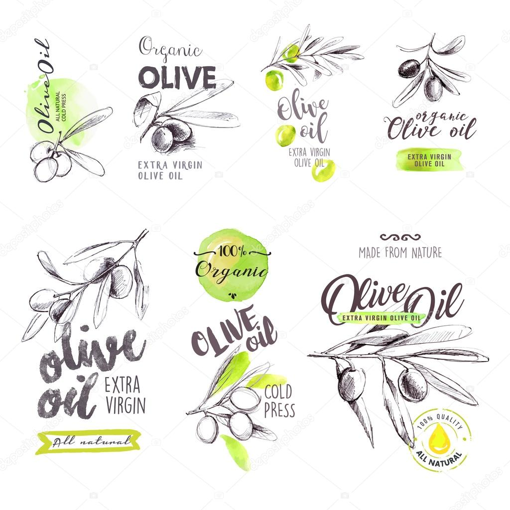 Set of hand drawn watercolor labels and signs of olive oil