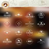 Photo Set of vintage style elements for labels and badges for meat, fresh organic products, on the stylized background
