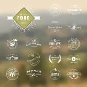 Photo Set of vintage style elements for labels and badges for natural food and drink, organic products, biodynamic agriculture, on the nature background