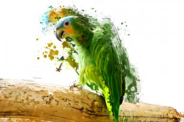 Green parrot on the branch, abstract animal concept