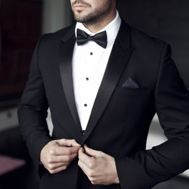 Sexy man in tuxedo and bow tie posing stock vector