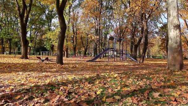 podzim v městském parku
