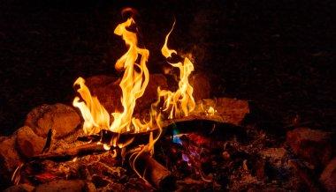 bush fire place