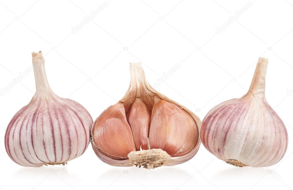 Raw garlic bulbs