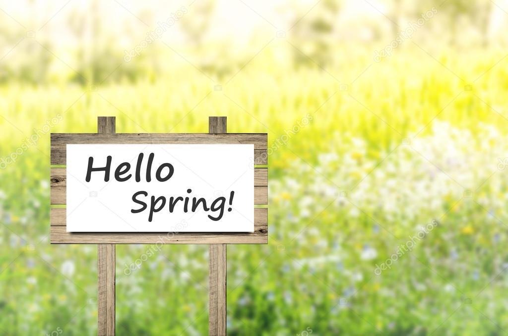 Primavera De Olá Frase Sobre Papel Branco Fundo De Natureza De