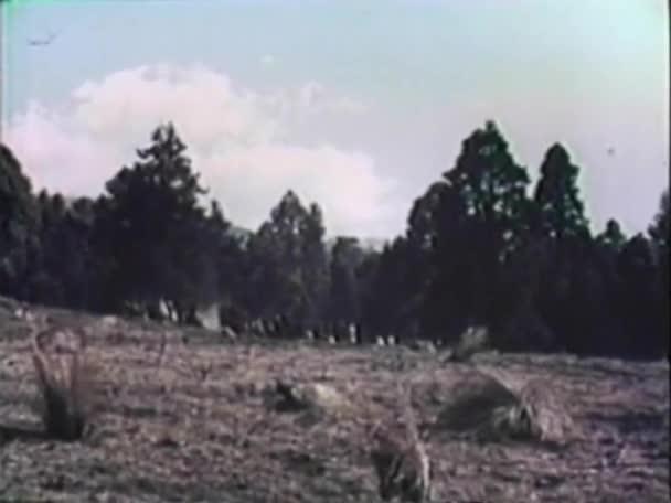 Američtí indiáni postavili na bojišti
