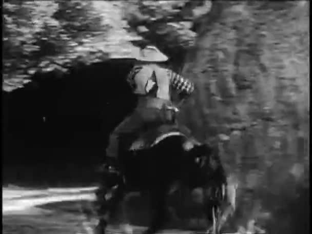 Cowboy Reitpferd