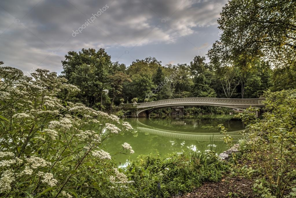 Bow bridge in summer