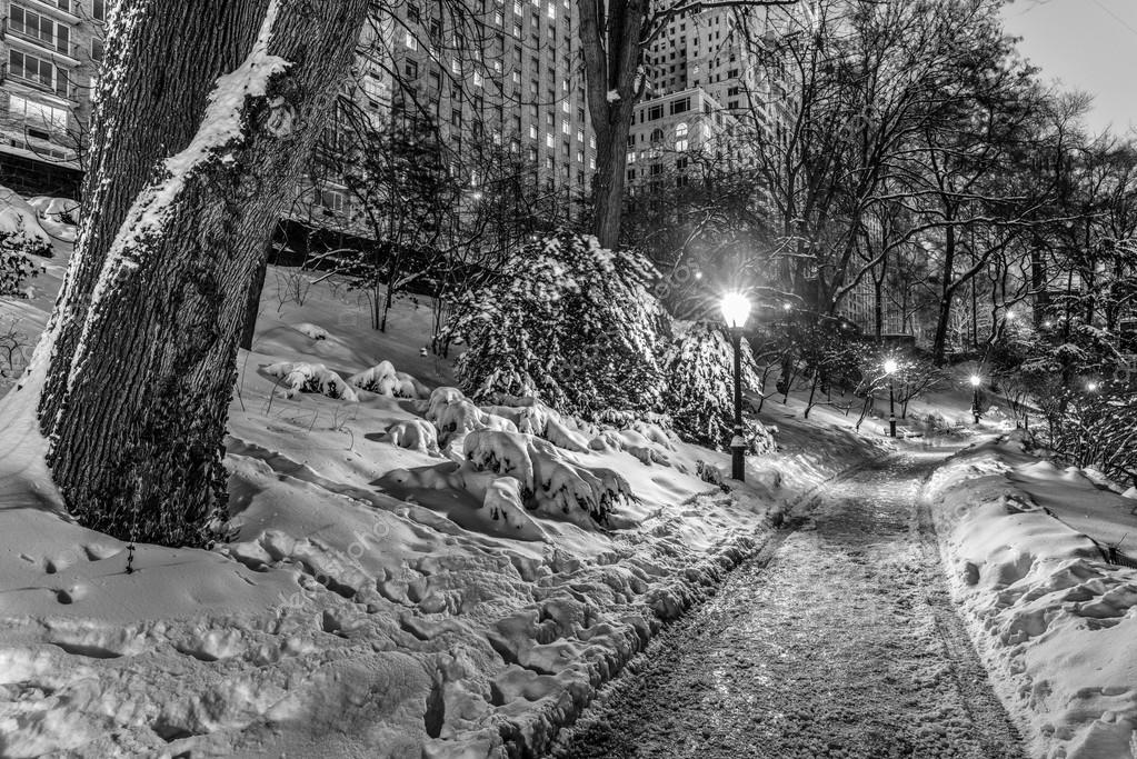 winter storm Central Park, New York City