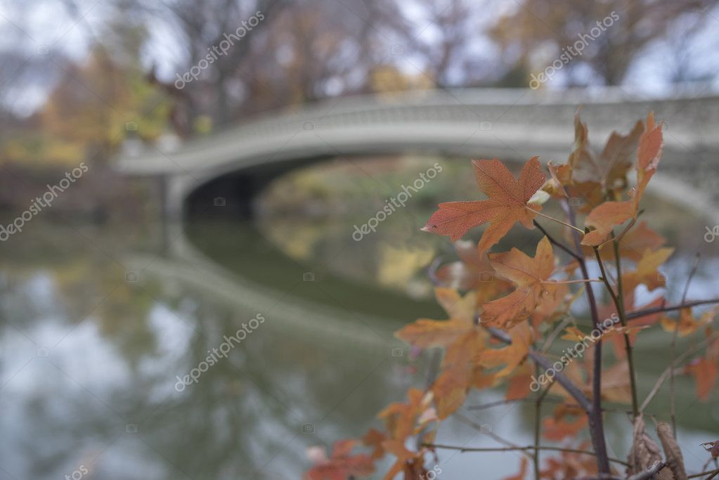 Bow bridge in autumn