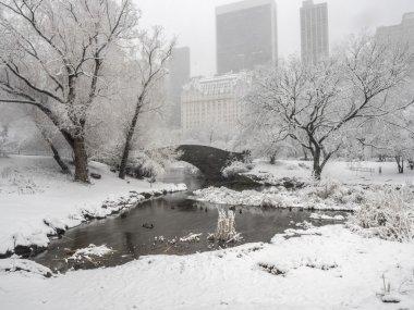 Gapstow bridge Central Park, New York City during snow storm