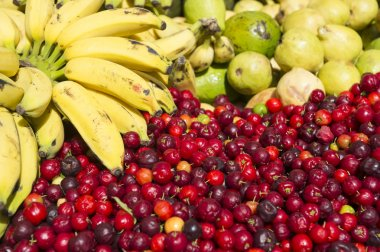 Bananas and Fresh Ripe Red Acerola Cherry Fruit