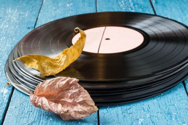 The old vinyl records and dry autumn leaves