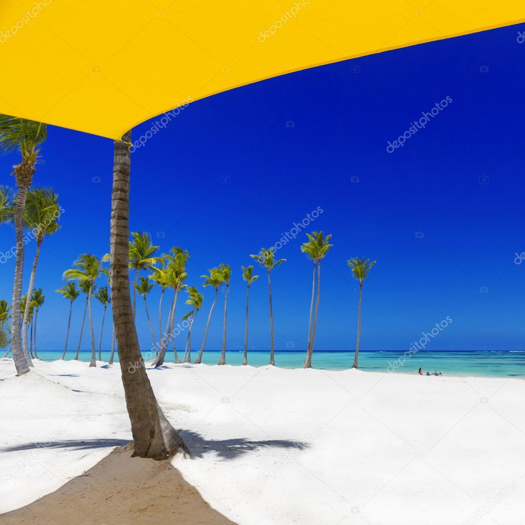 Beach on the tropical island
