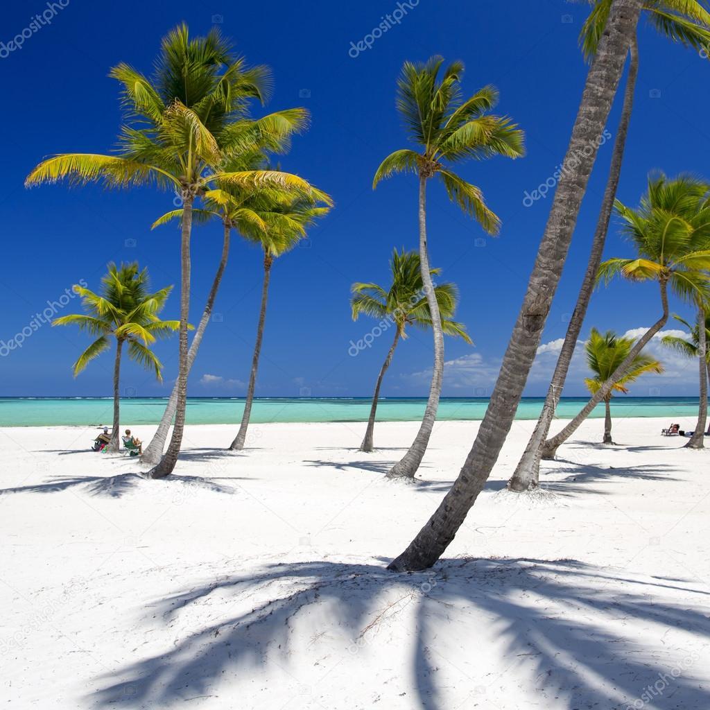 Beach on the tropical island
