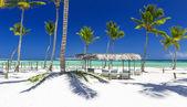 Fotografia spiaggia dellisola tropicale