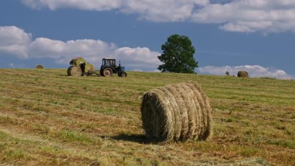 Videoaufnahme von Saisonarbeit, landwirtschaftlichem Traktor, Futterzubereitung, Futterernte für Nutztiere