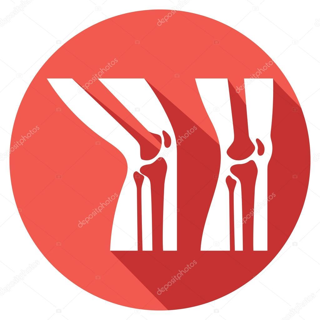 Menschlichen Knie Anatomie Flach Symbol Stockvektor