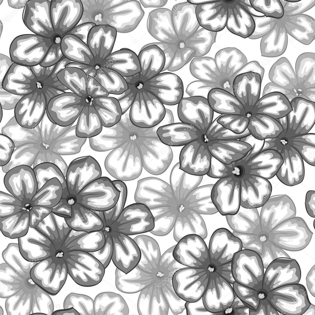 Beautiful monochrome black and white seamless background with beautiful monochrome black and white seamless background with flowers daisy stok vektr mightylinksfo