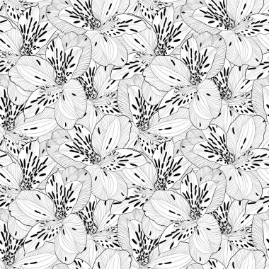 beautiful black and white seamless pattern in alstroemeria with contours.