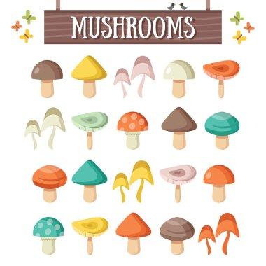 Trendy flat mushrooms set. Beautiful colorful mushrooms