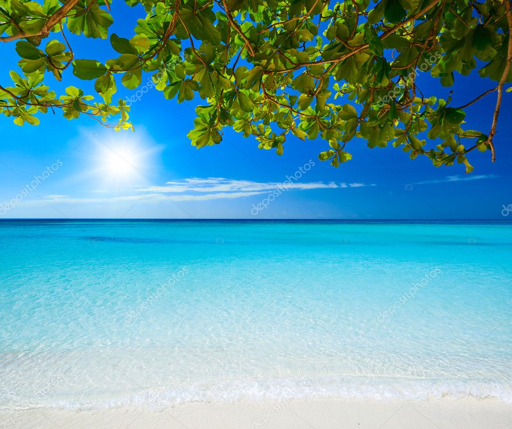 Beautiful Sunny Day At Tropical Beach Royalty Free Stock: Pictures: Beautiful Sunny Day