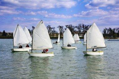 Lots of boats sailing