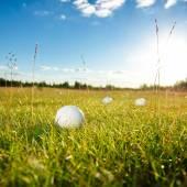 Zelená pole a bílý golfový míček sanset