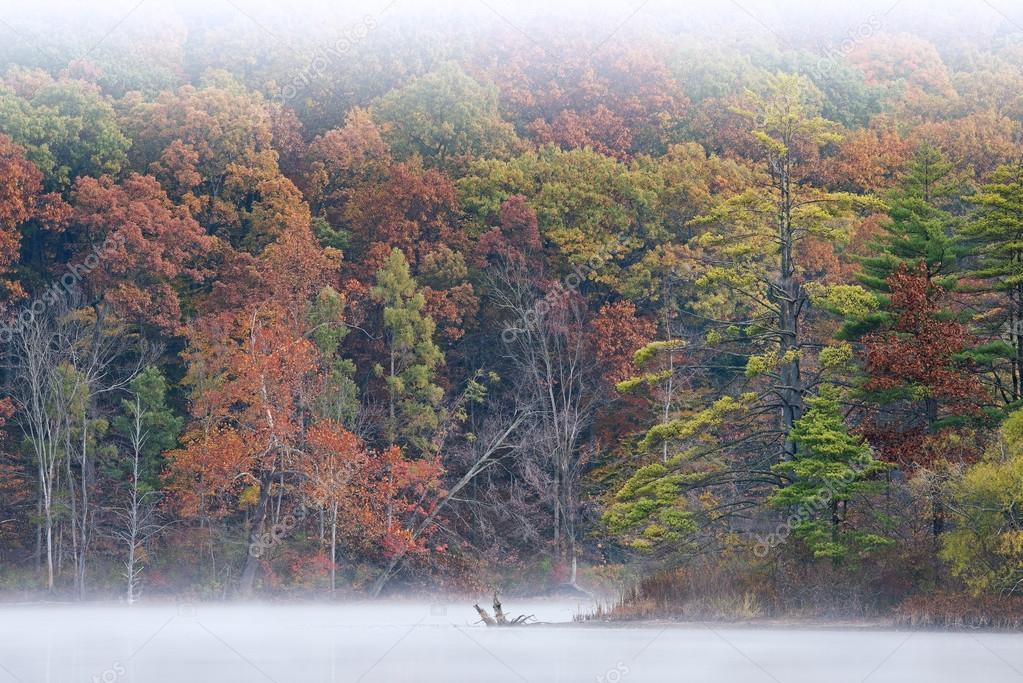 Autumn Hall Lake in Fog