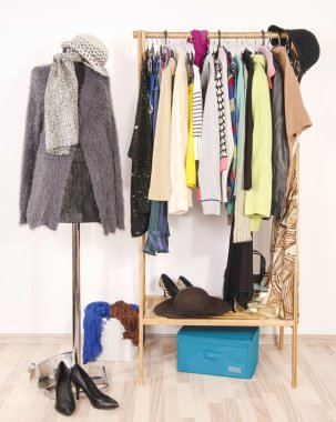 Wardrobe with clothes arranged on hangers and a winter outfit on