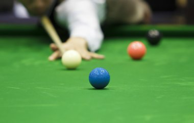 Ball and Snooker Player