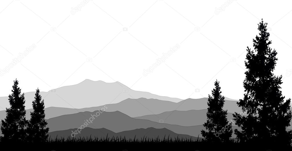 Coniferous forests for you design