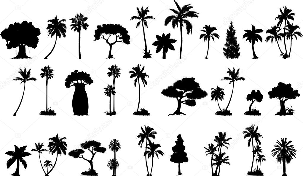 various trees silhouettes for you design