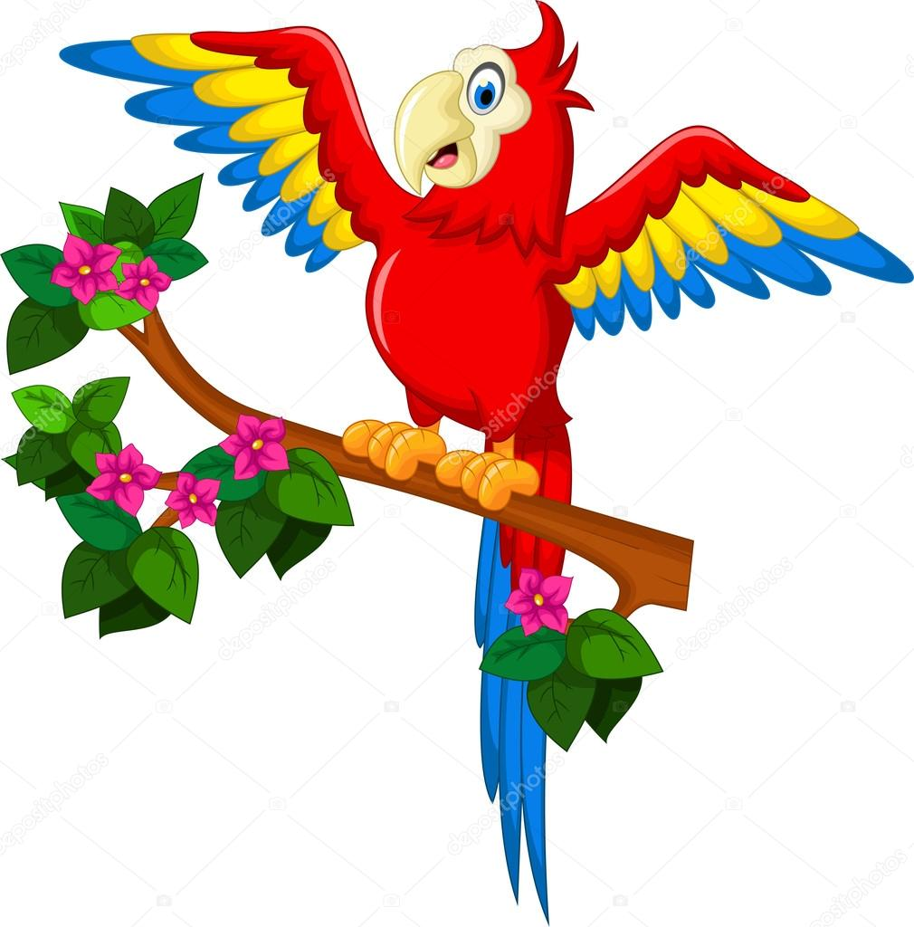 Cartoon red parrot on a branch for you design