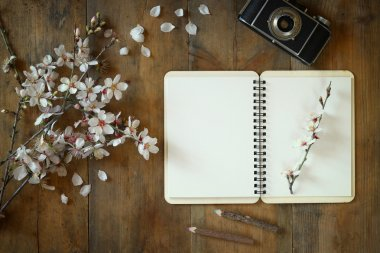 top view image of spring white cherry blossoms tree, open blank notebook, old camera on blue wooden table