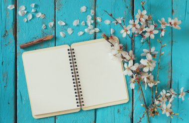 top view image of spring white cherry blossoms tree, open blank notebook next to wooden colorful pencils on blue wooden table. vintage filtered and toned image