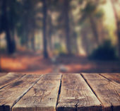 Fotografie Image of front rustic wood boards and background of trees in forest. image is retro toned