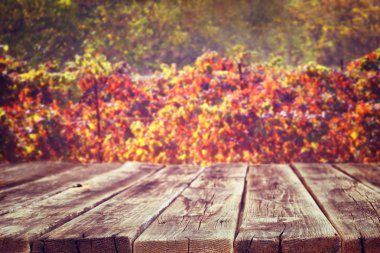 Wooden rustic boards in front of vineyard background in autumn. ready for product display.