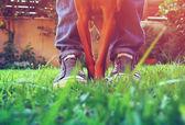 Fotografia persona con il suo cane