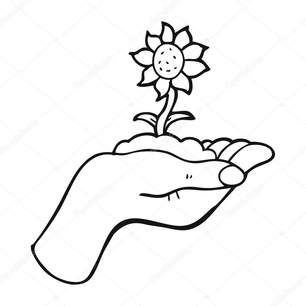 Imágenes Flor En Mano Flor Blanco Y Negro De Dibujos