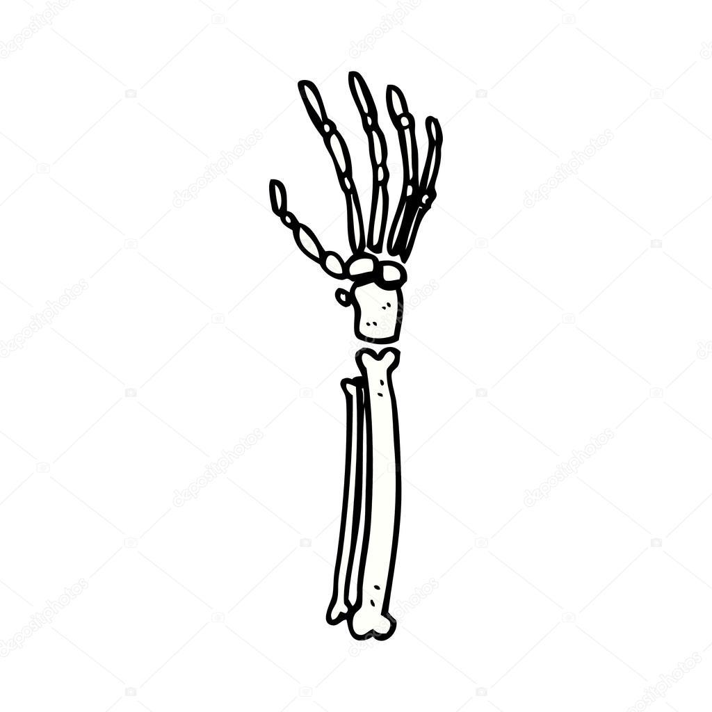 main squelette dessin anim u00e9 comique  u2014 image vectorielle