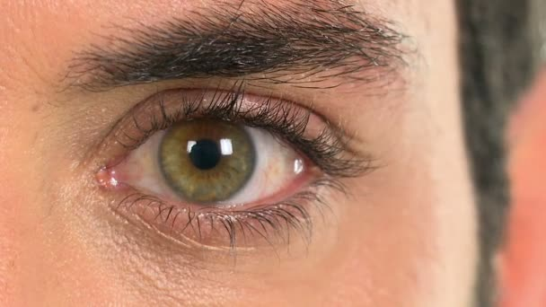 Green eye of a man